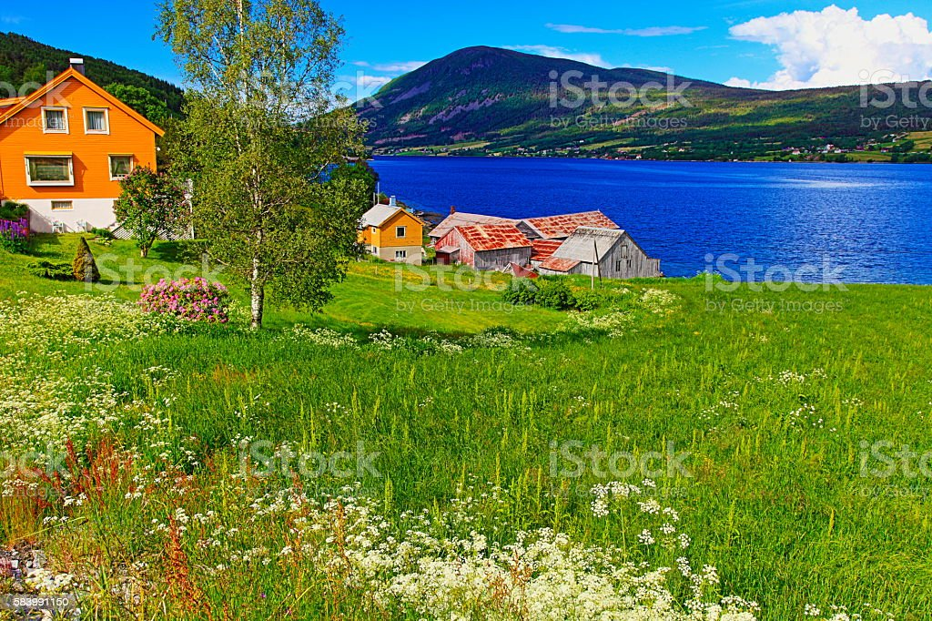 Norwegian paradise: village houses over fjord, Norway, Scandinavia stock photo
