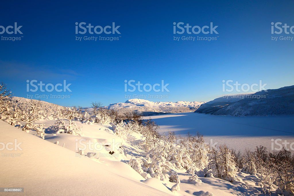 Norwegian Winter stock photo