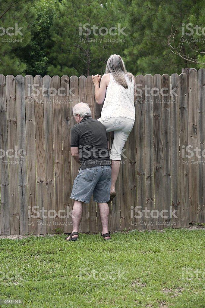 Nosey Neighbor stock photo