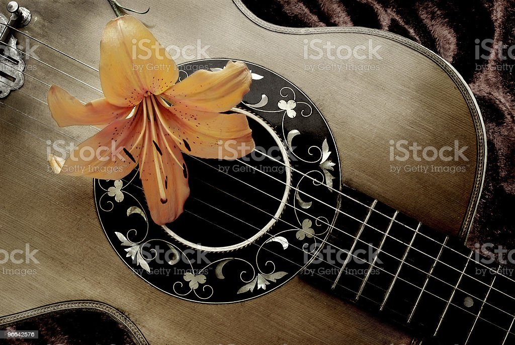 Nostalgia with vintage guitar and lily royalty-free stock photo