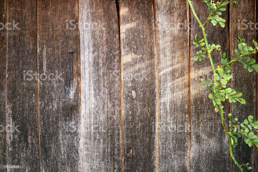 Nostalgia wood wall royalty-free stock photo