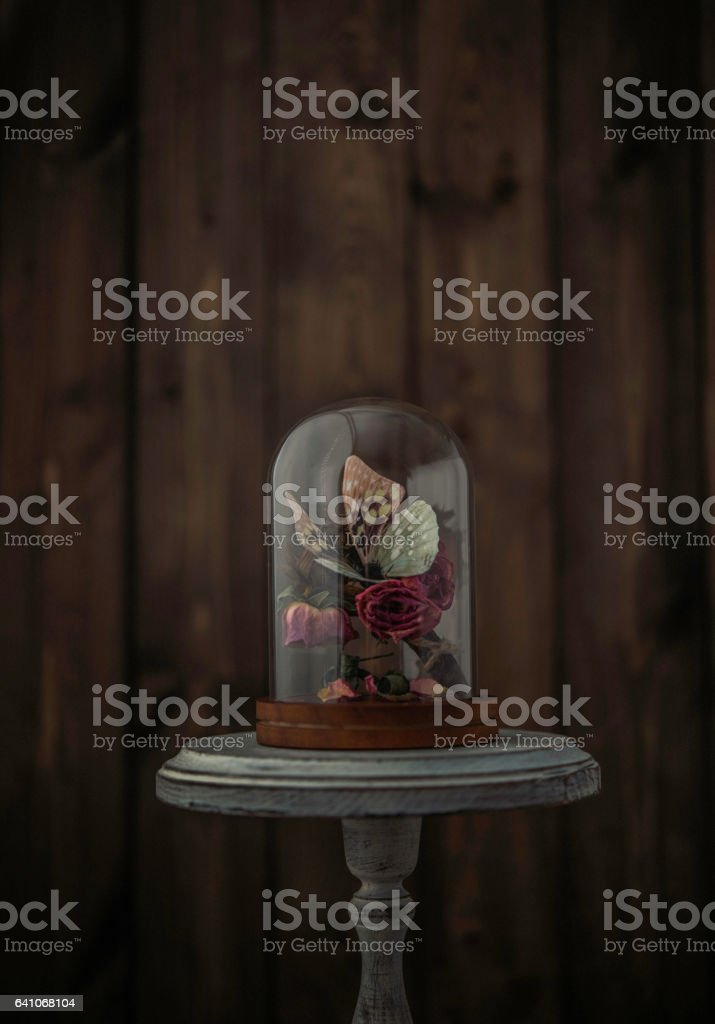 Nostalgic souvenirs. Butterfly and roses still life stock photo