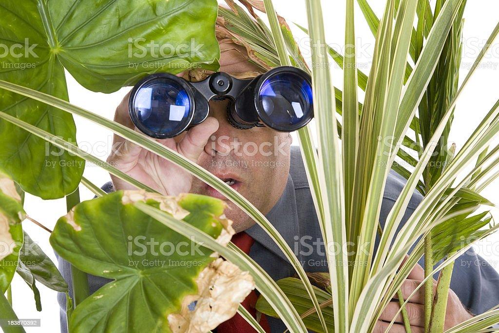 Nosy Business Man royalty-free stock photo