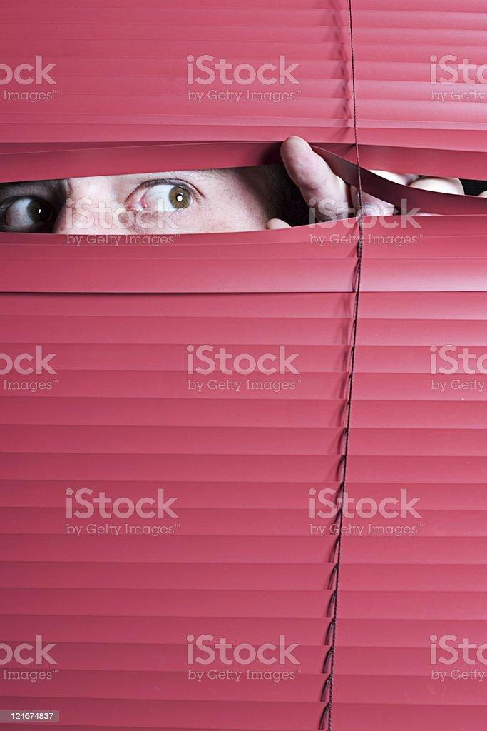 Nosy Neighbor - Male royalty-free stock photo