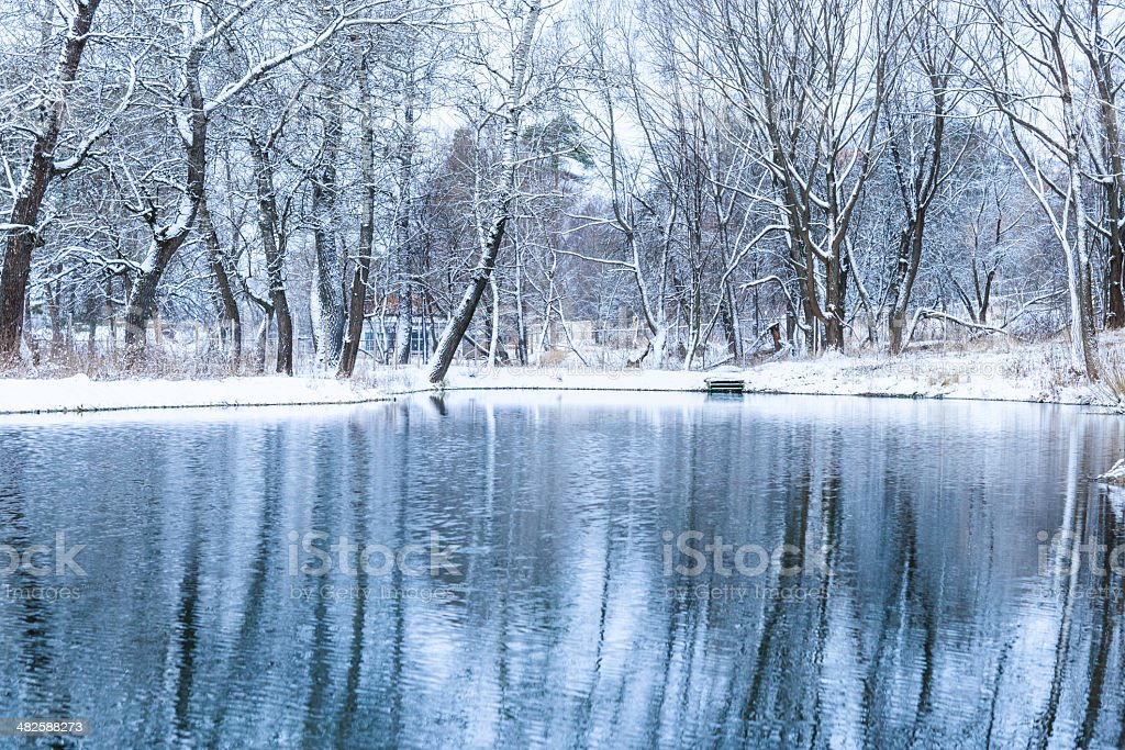 not frozen pond in winter stock photo