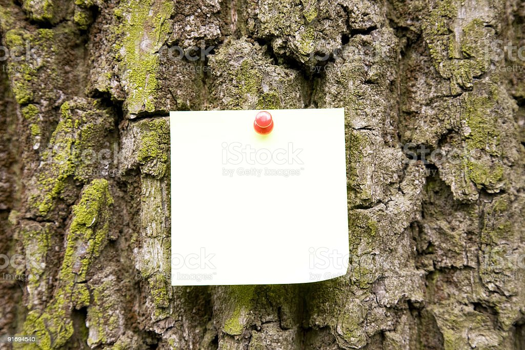 Note On The Tree royalty-free stock photo