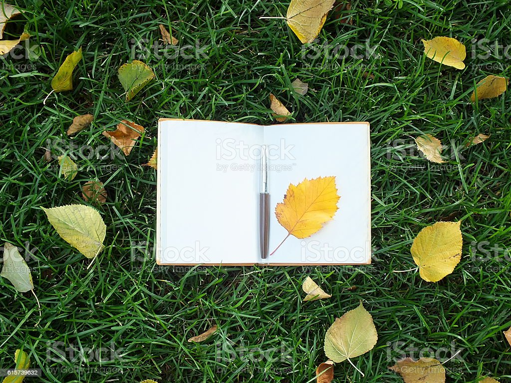 Note pad on green grass stock photo