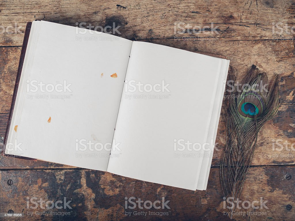 Notebook and peacock feather stock photo