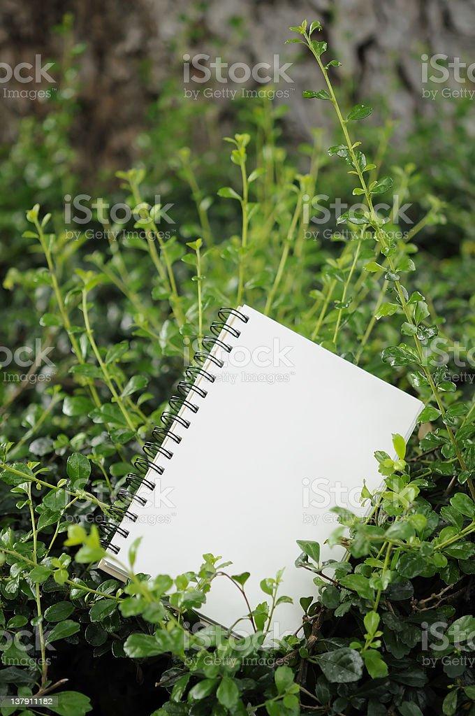 Notebook in garden stock photo