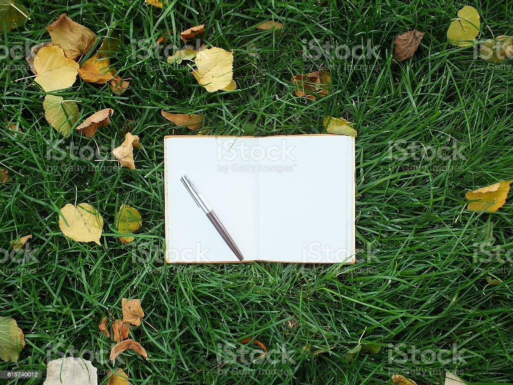 notebook on green grass stock photo