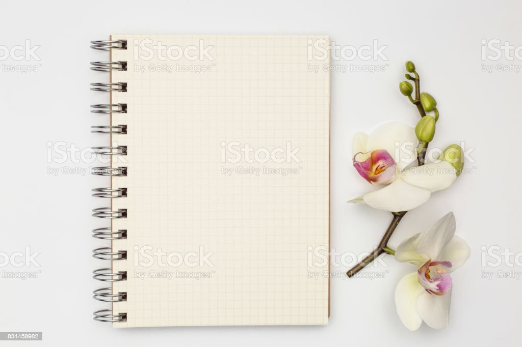 Notebook with beautiful flower congratulations concept stock photo