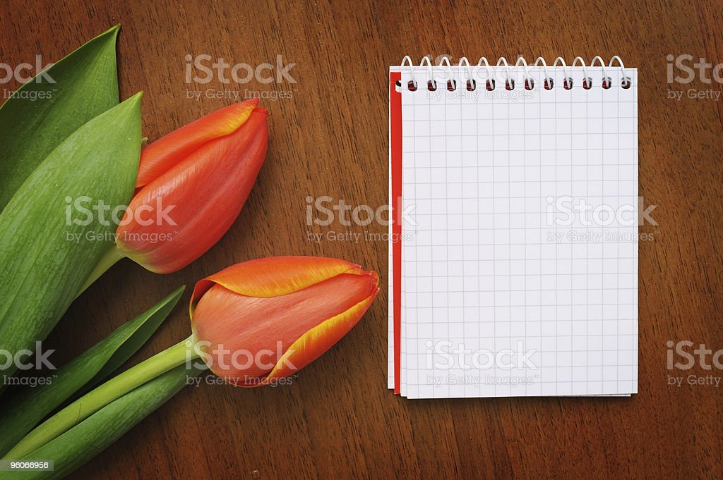 Notebook with tulips royalty-free stock photo