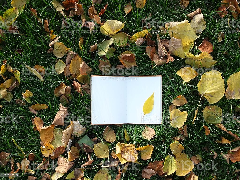 Notepad on the grass stock photo
