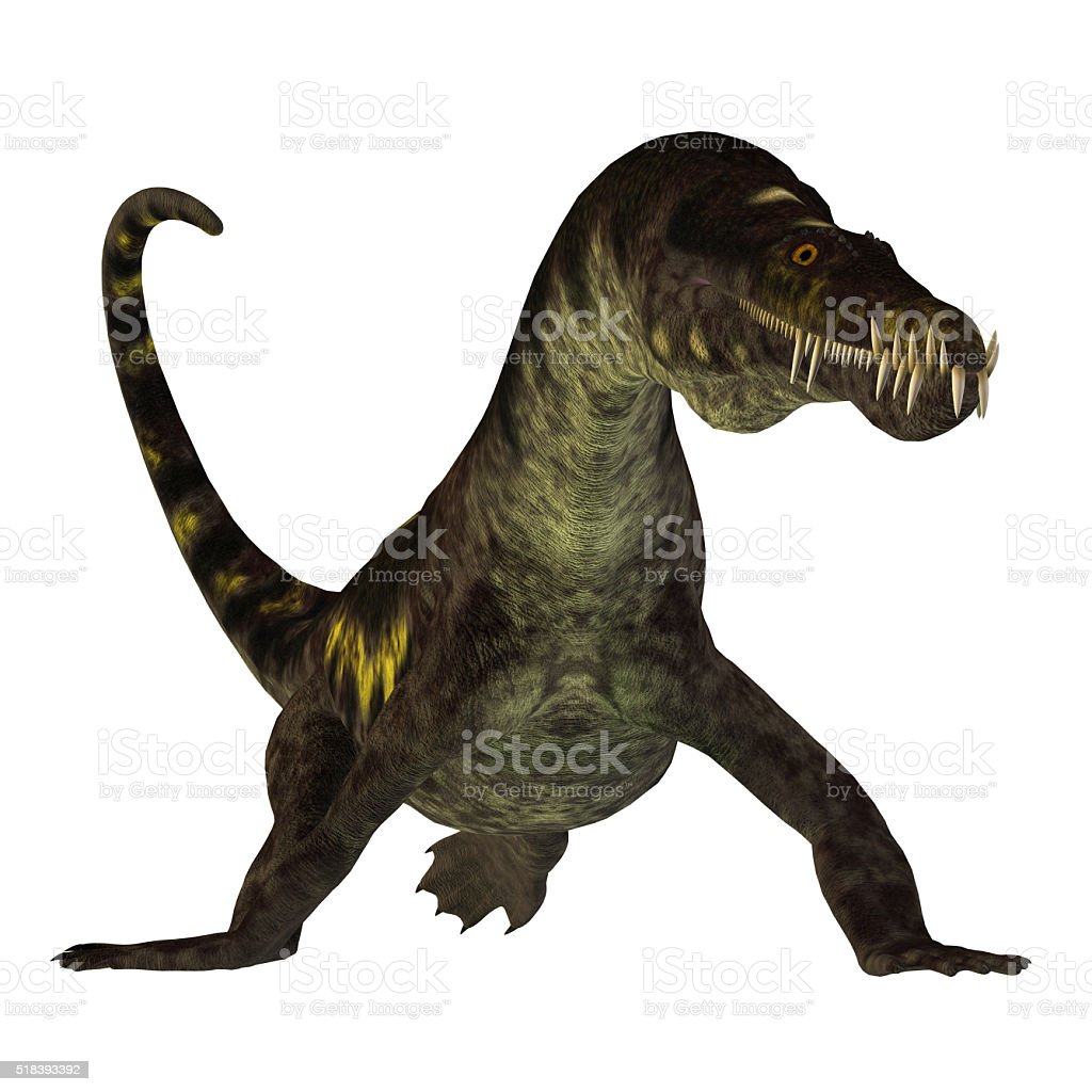 Nothosaurus on White stock photo