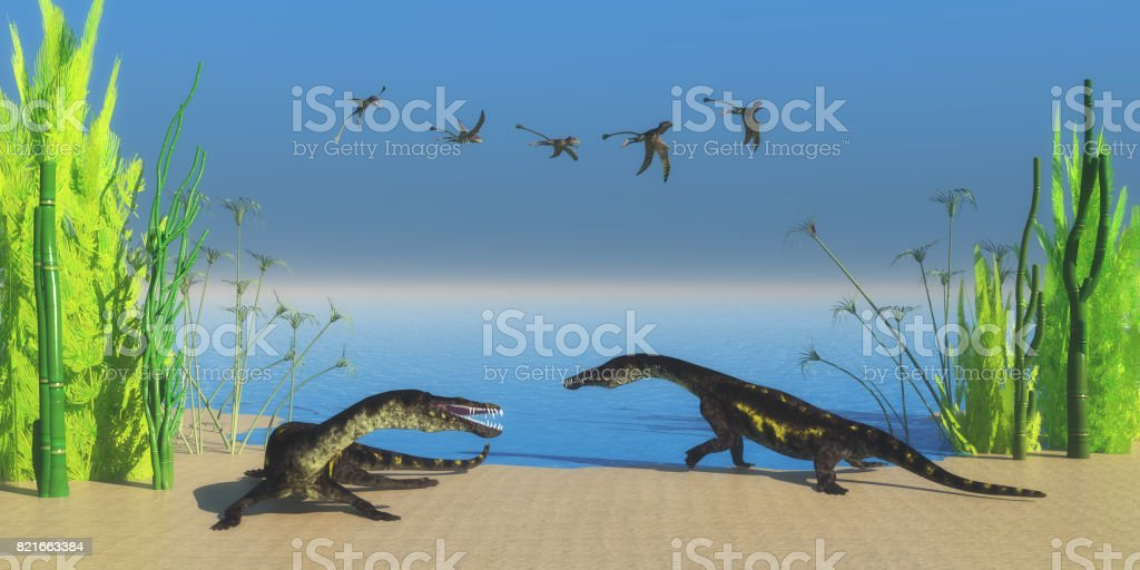 Nothosaurus Reptile Beach stock photo