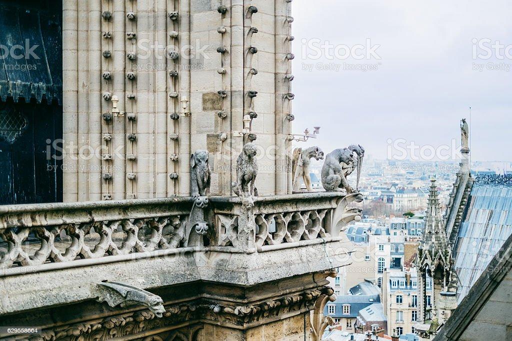 Notre Dame gargoyle and city of Paris stock photo