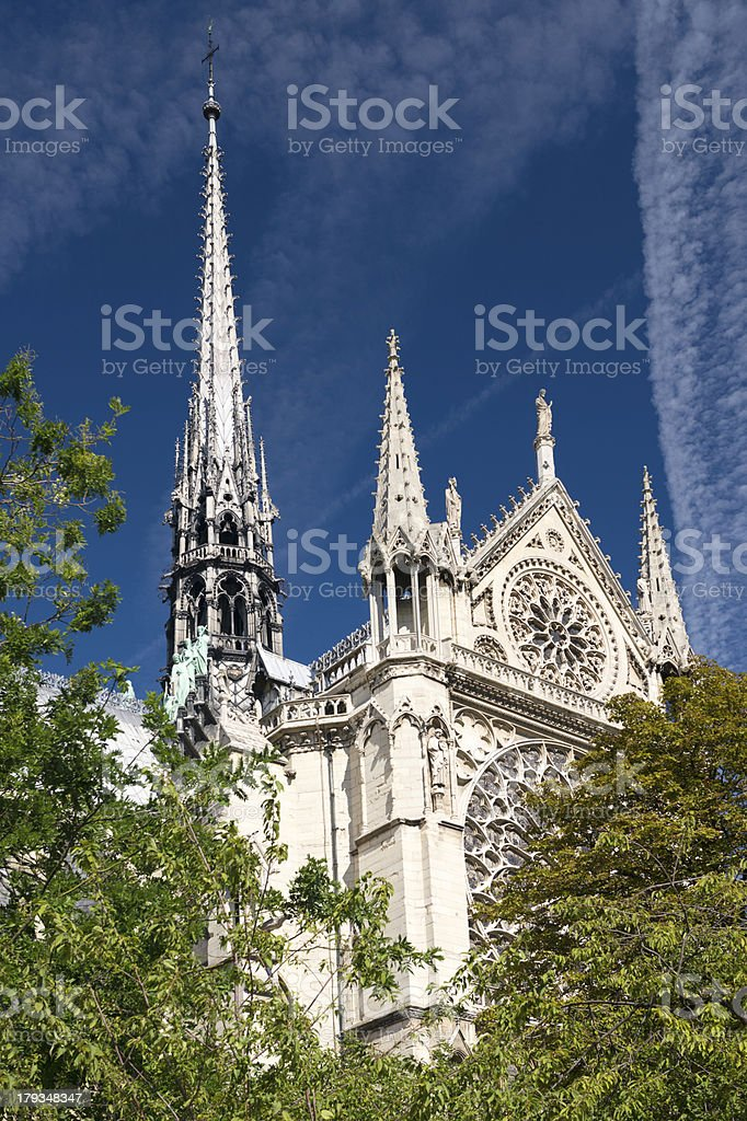 Notre Dame, Paris (XXXL) royalty-free stock photo
