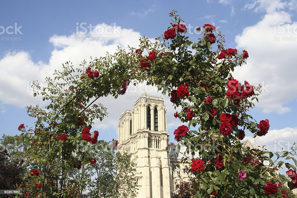 Notre Dame with Roses royalty-free stock photo