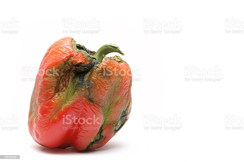 not-so-fresh bell pepper stock photo