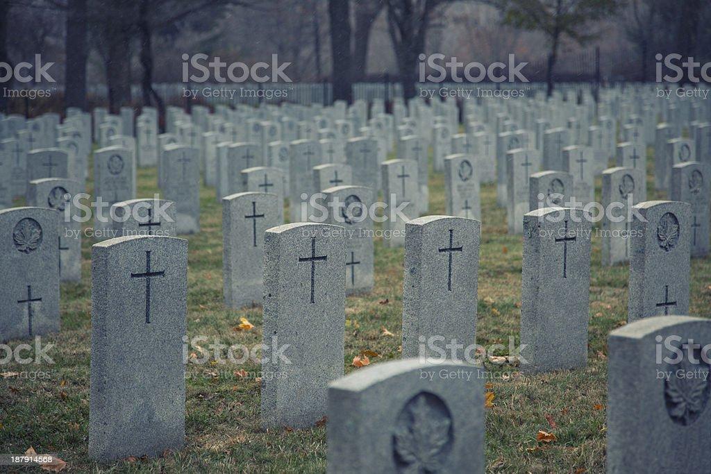 november 11, 2013 - Remembrance Day royalty-free stock photo