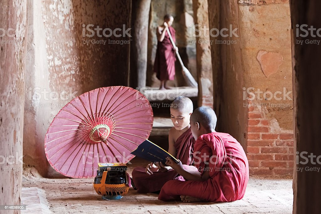 Novice buddhist monk reading a book inside the temple stock photo