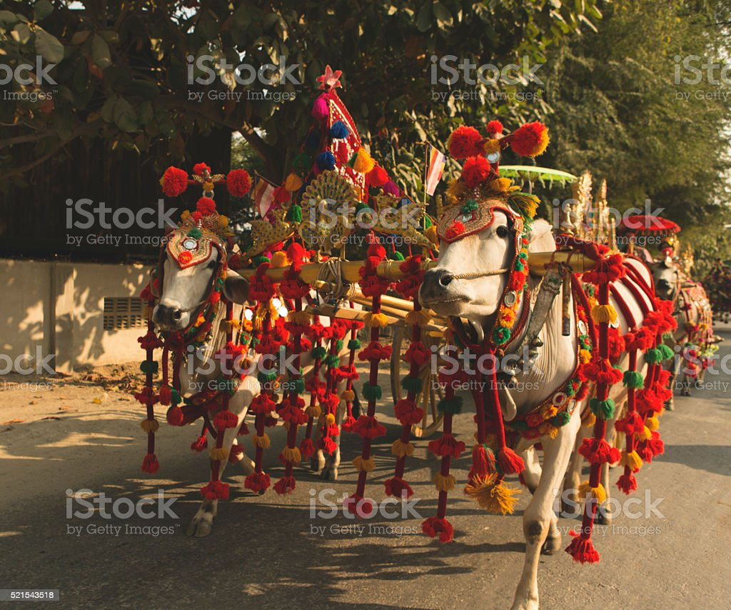 Novitiation Procession in Mingun Mandalay Myanmar stock photo