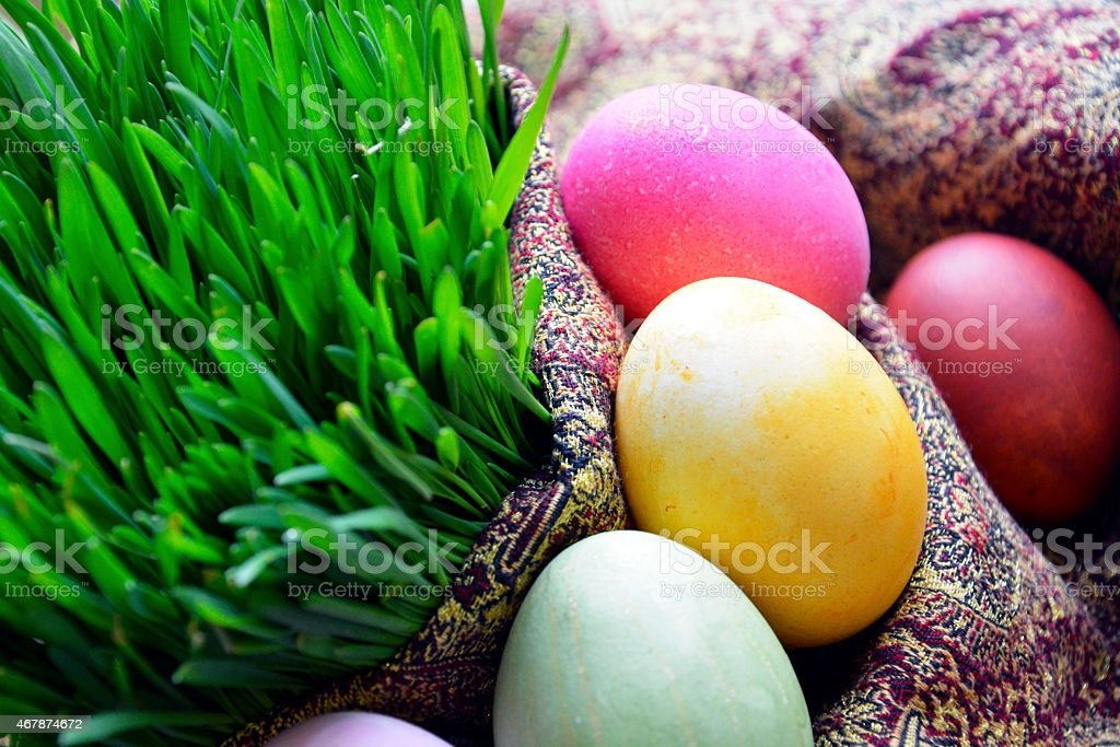 Novruz stock photo