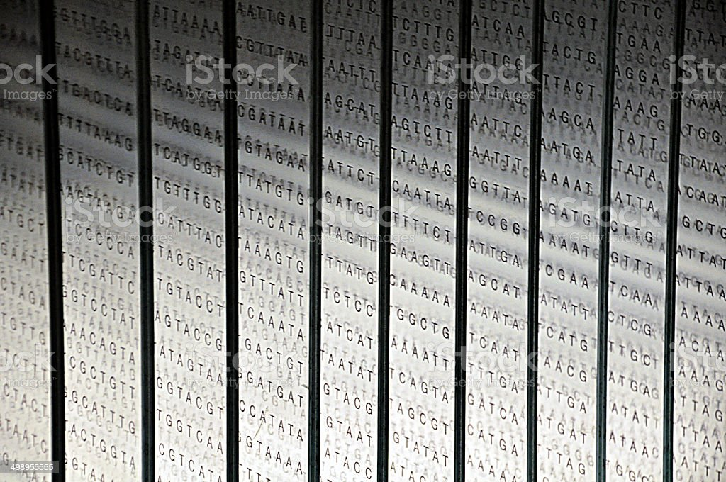 DNA Nucleotide Sequence stock photo