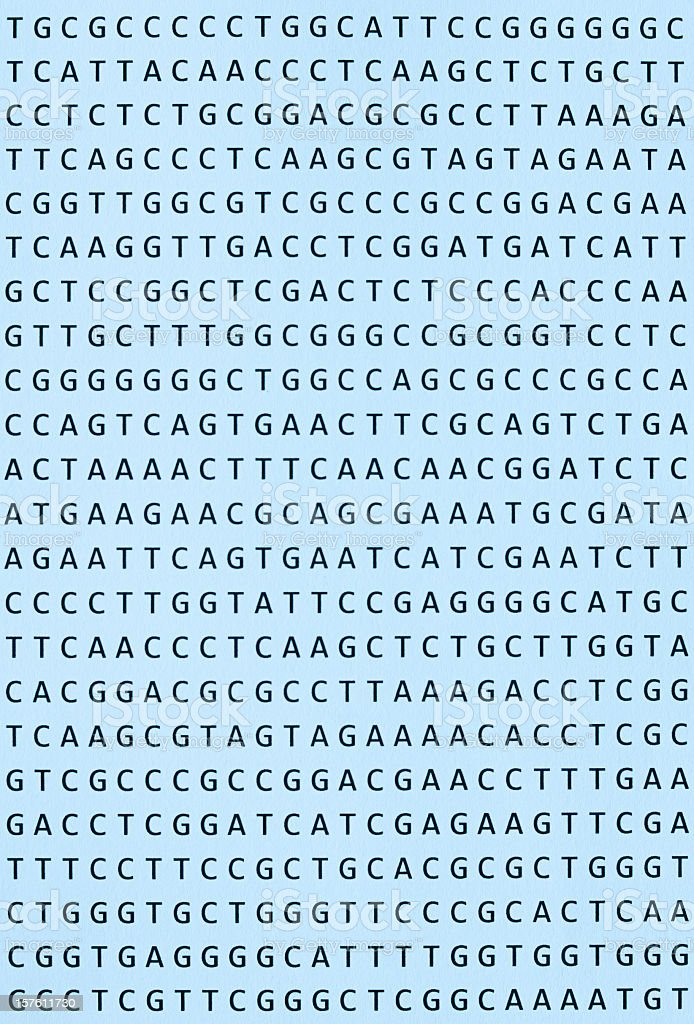 DNA nucleotide sequence printout on paper vertical orientation stock photo