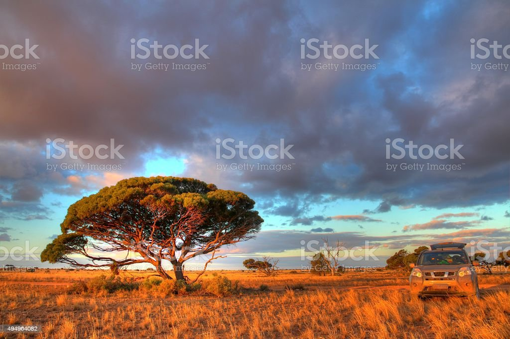 Nullarbor Plain, Australia stock photo