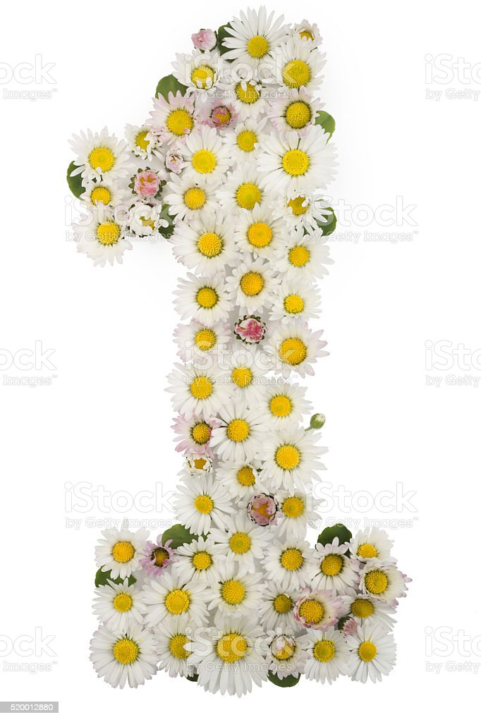 number 1, font for baby, natural flowers daisies stock photo