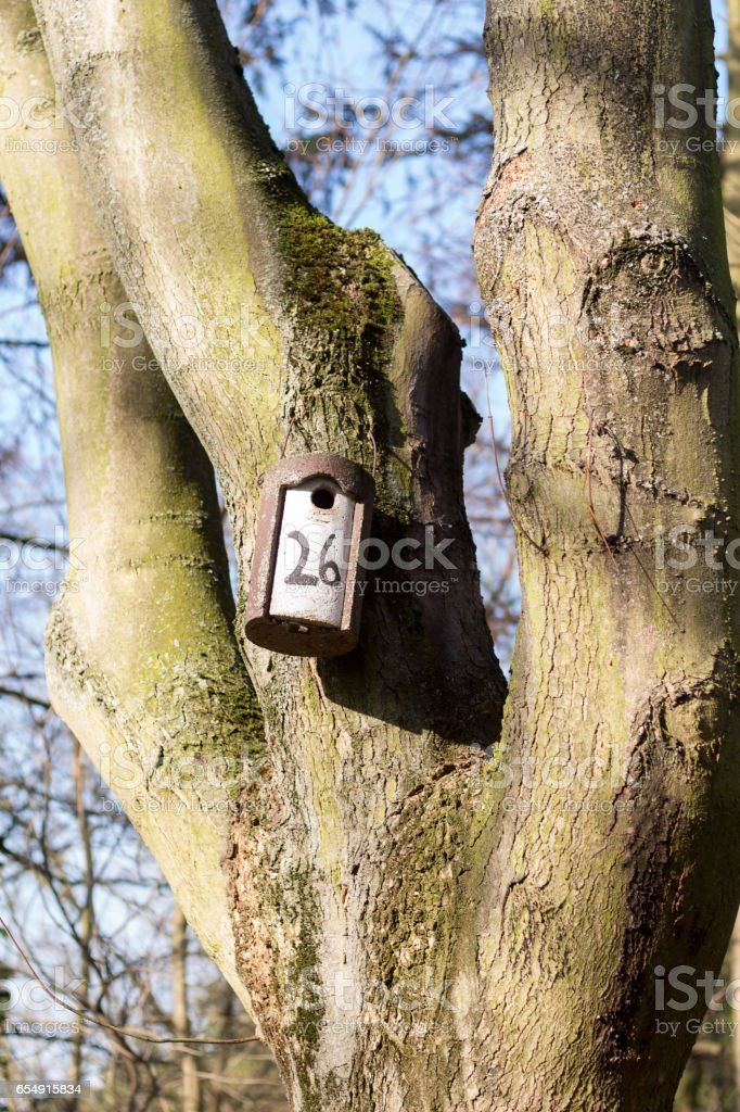 number 26 stock photo