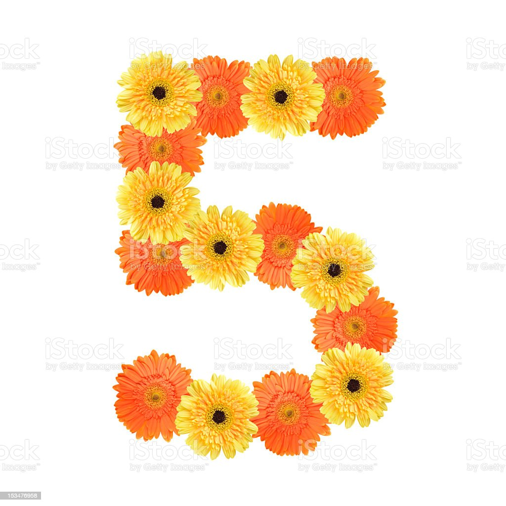 Number 5 created by flowers stock photo