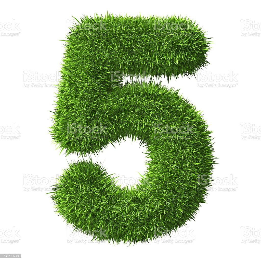Number 5 of Grass stock photo
