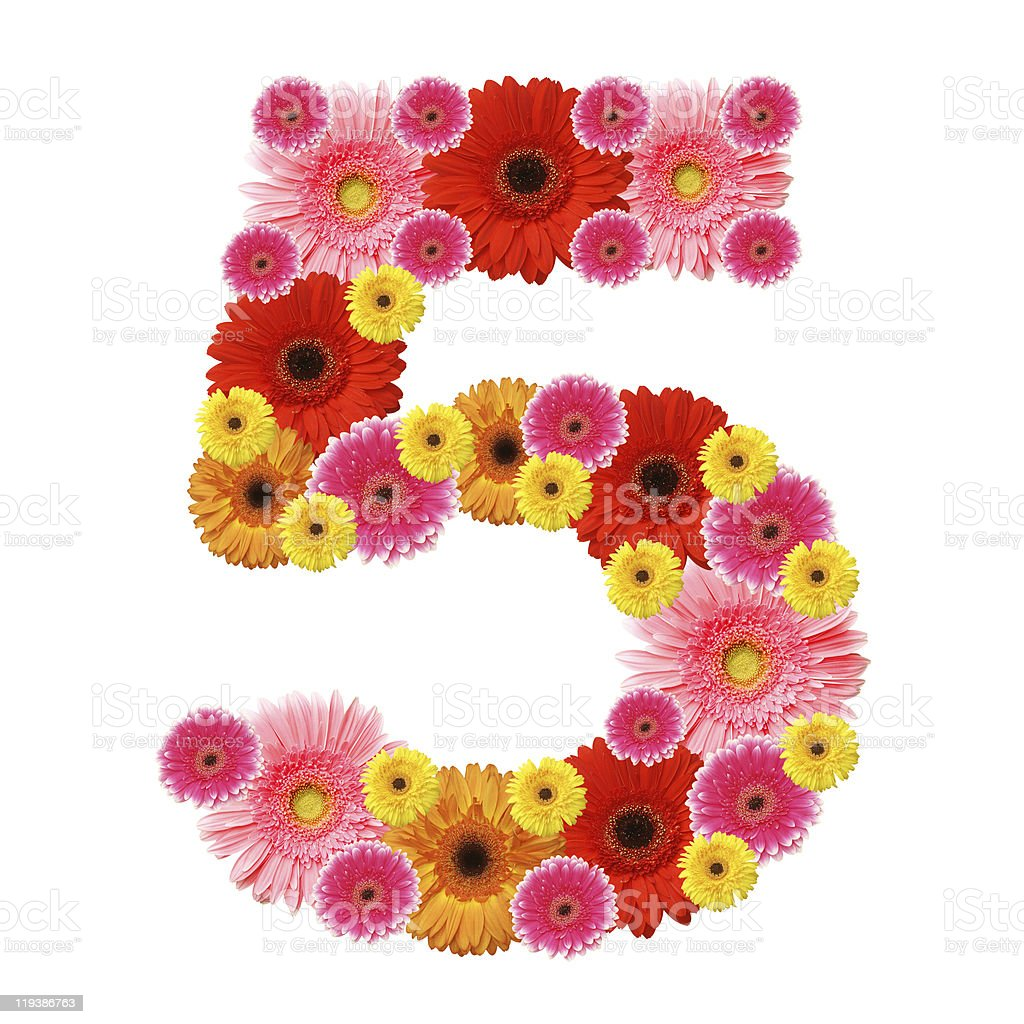 Number 5 shaped with various colorful flowers stock photo