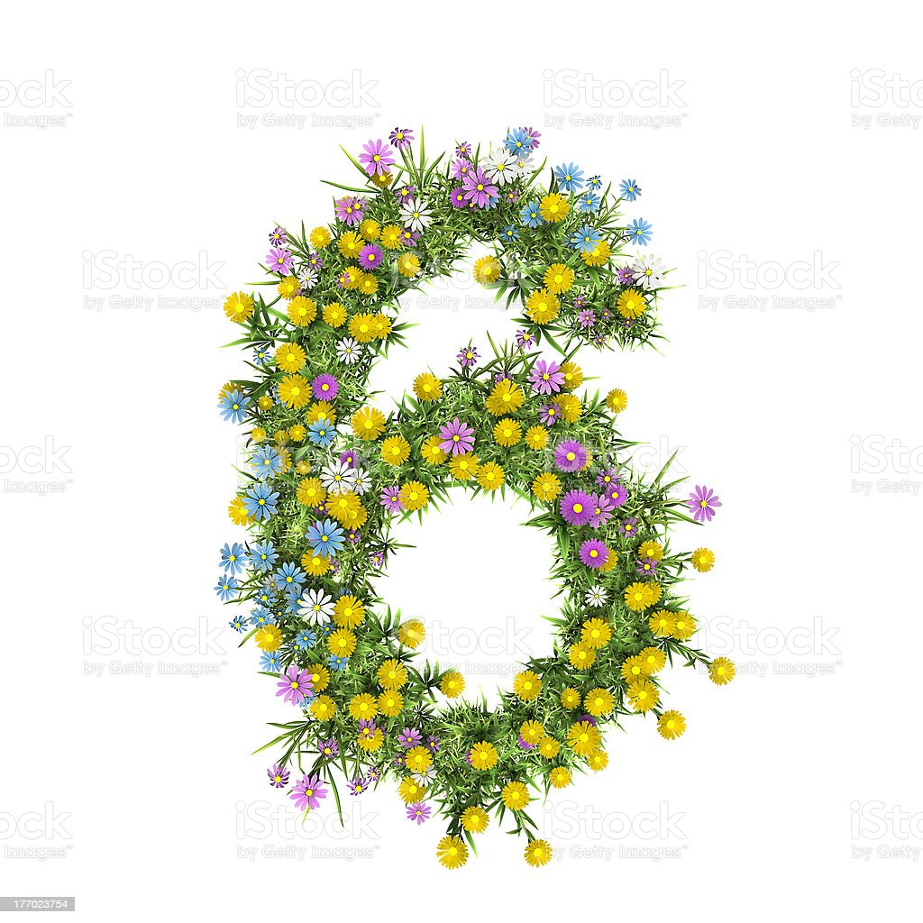 Number 6, flower alphabet isolated on white royalty-free stock photo