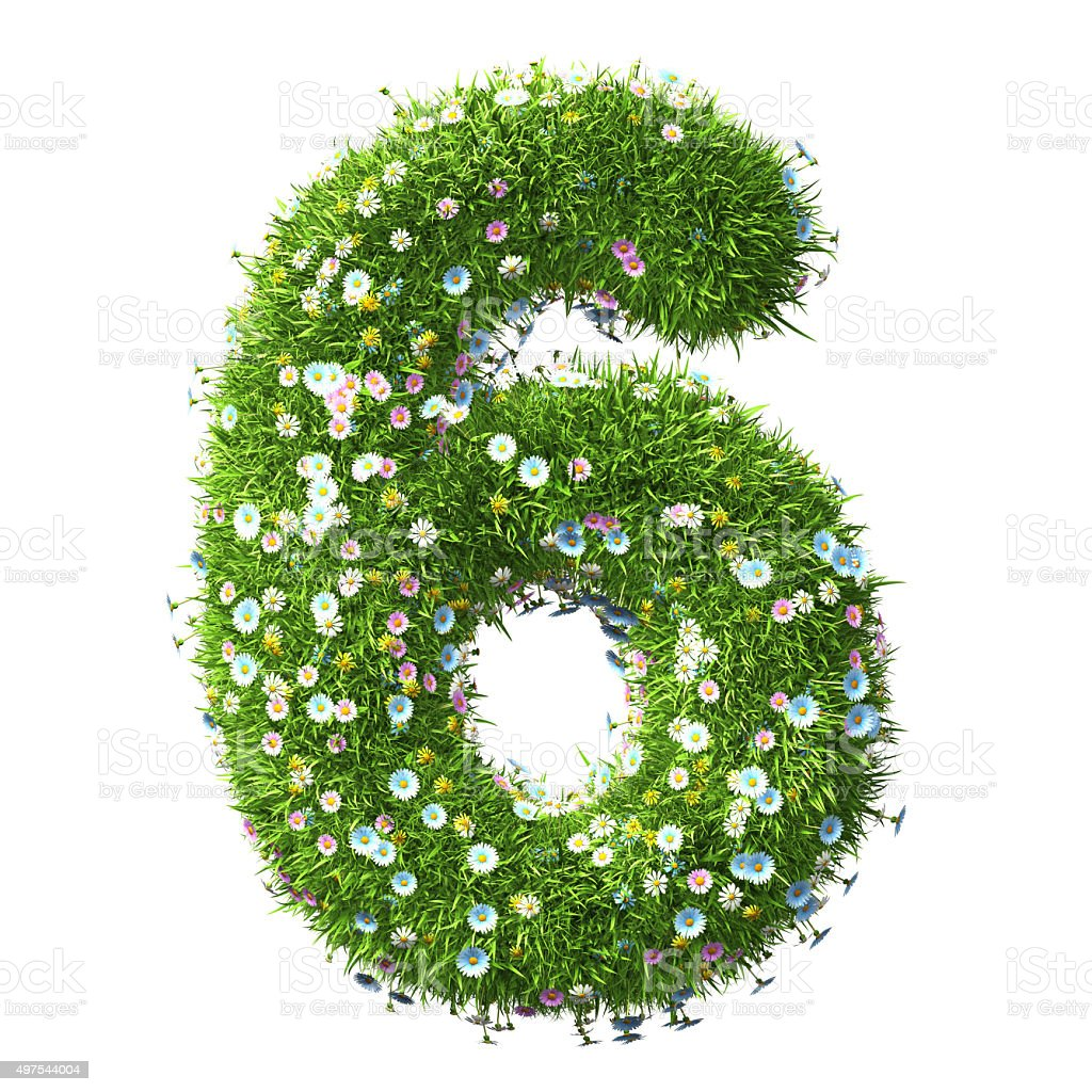 Number 6 Of Grass And Flower stock photo