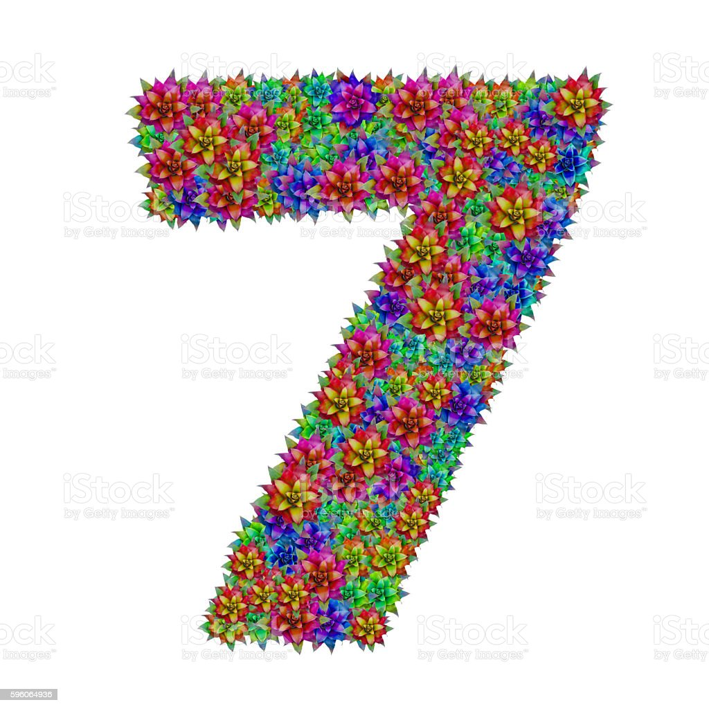 Number 7  made from bromeliad flowers stock photo