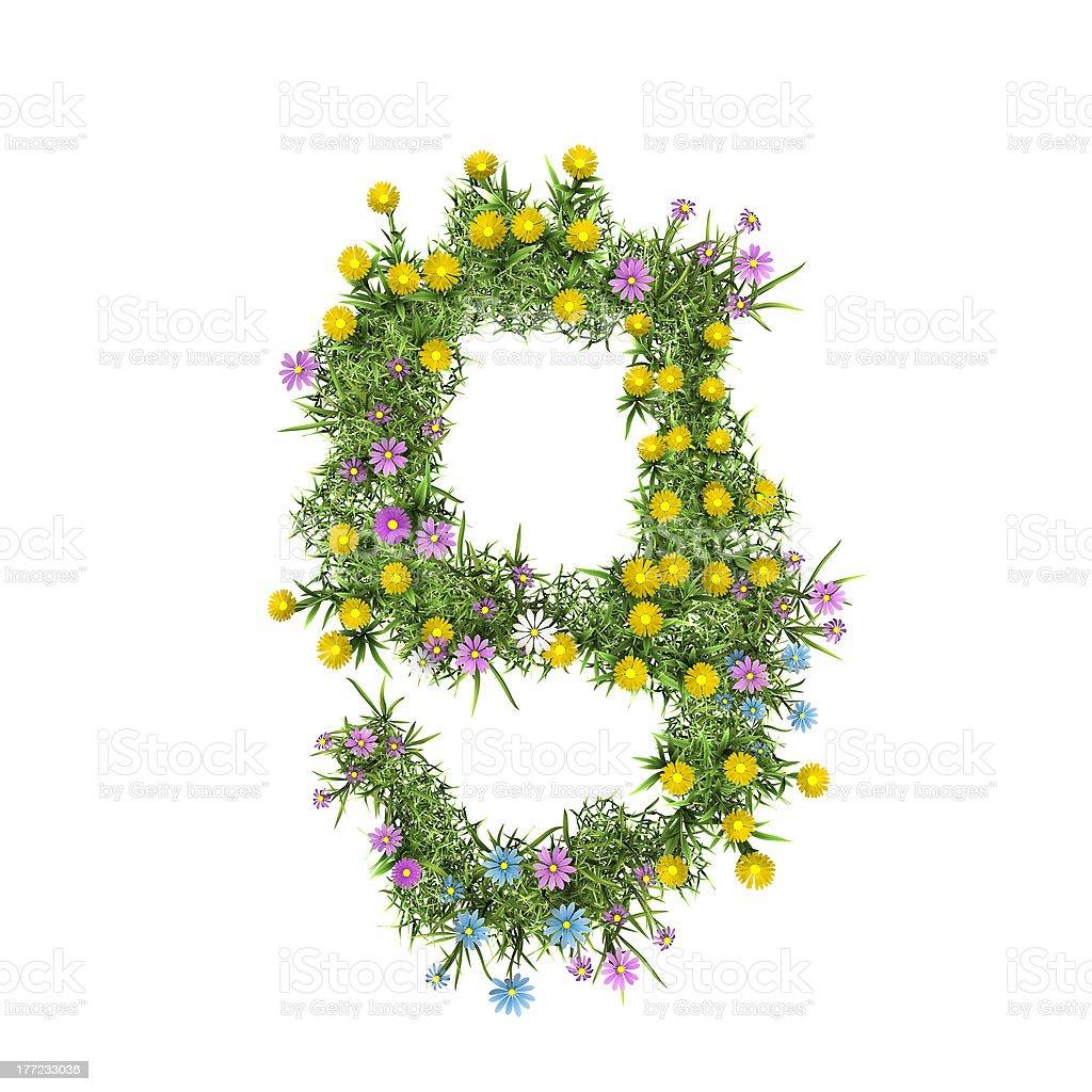 Number 9, flower alphabet isolated on white royalty-free stock photo