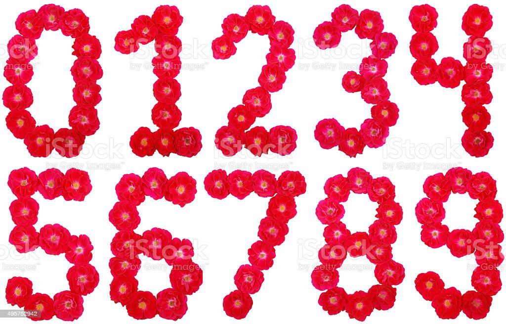 ALL number laid out by roses stock photo
