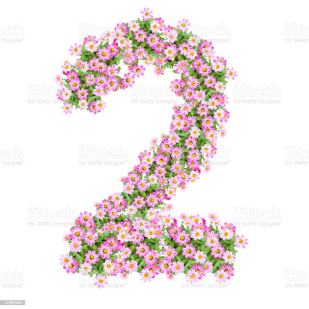 Numbers 2 made from Zinnias flowers vector art illustration