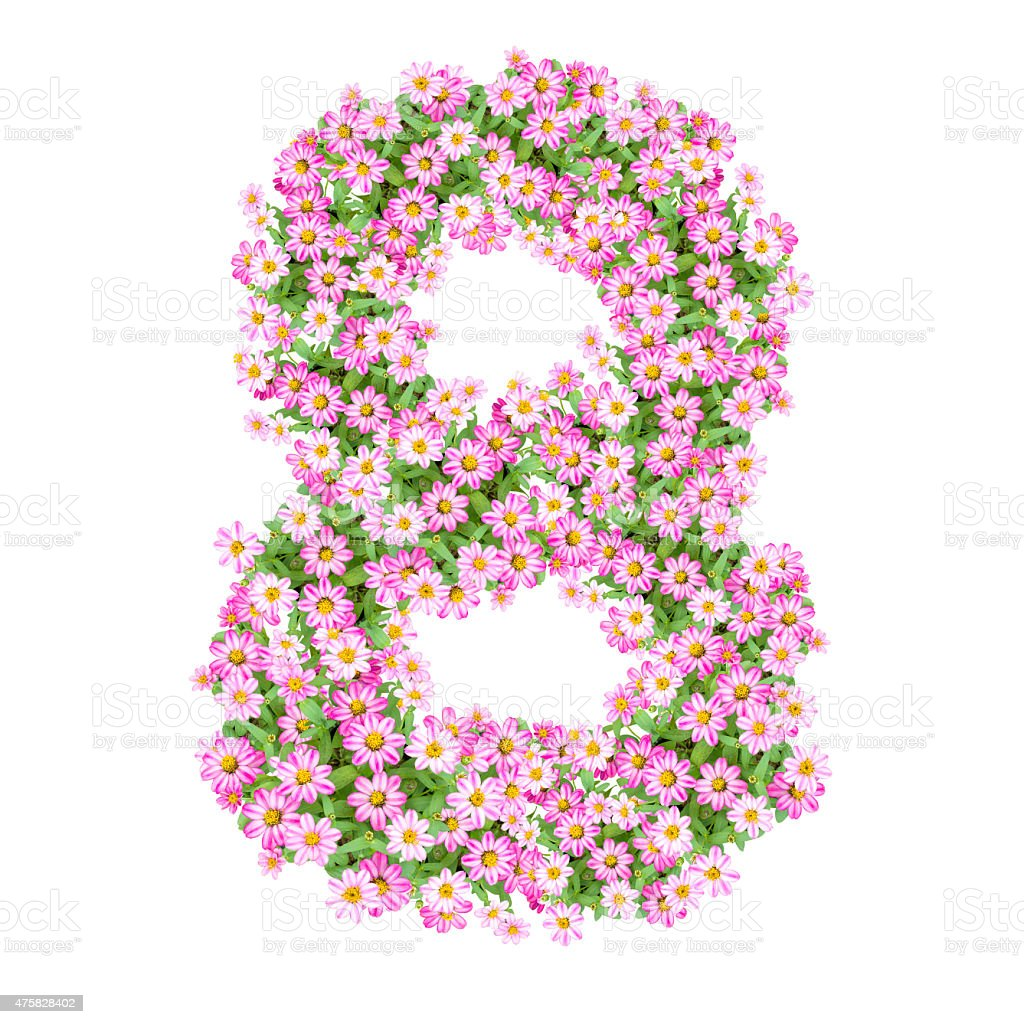 Numbers 8 made from Zinnias flowers stock photo