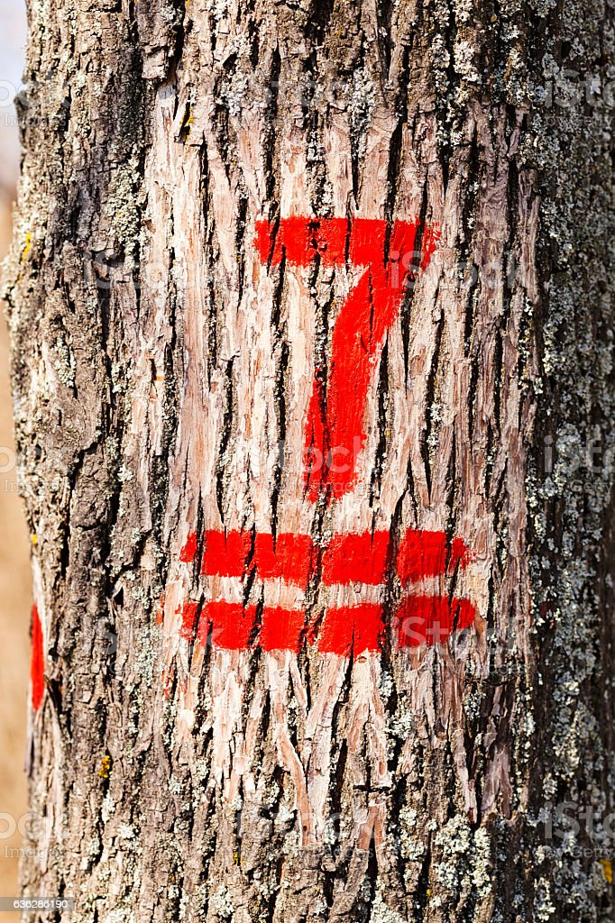 Numbers on trees stock photo