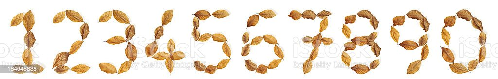 Numbers with leaves: 0 to 9 royalty-free stock photo