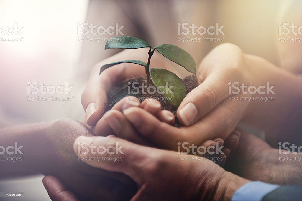 Nurturing corporate growth stock photo