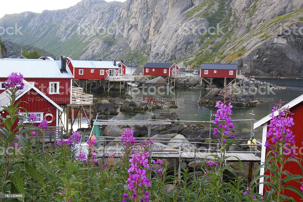 Nusfjord, Norway royalty-free stock photo