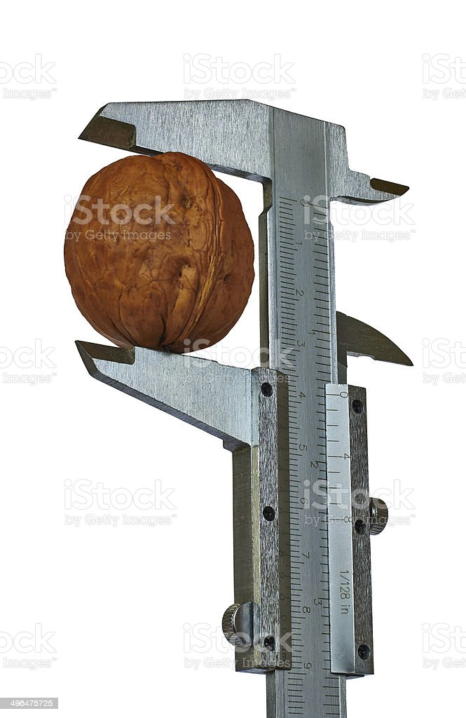 nut and caliper royalty-free stock photo