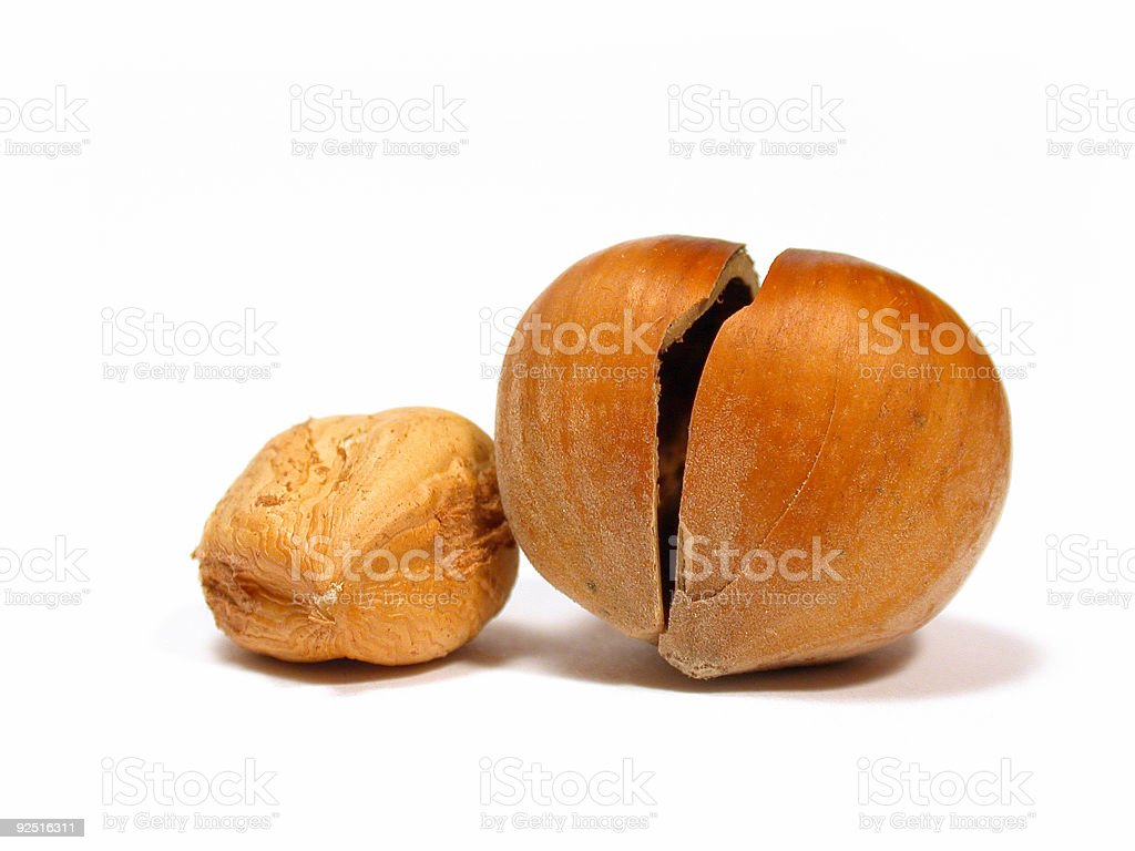 Nut and nutshell royalty-free stock photo