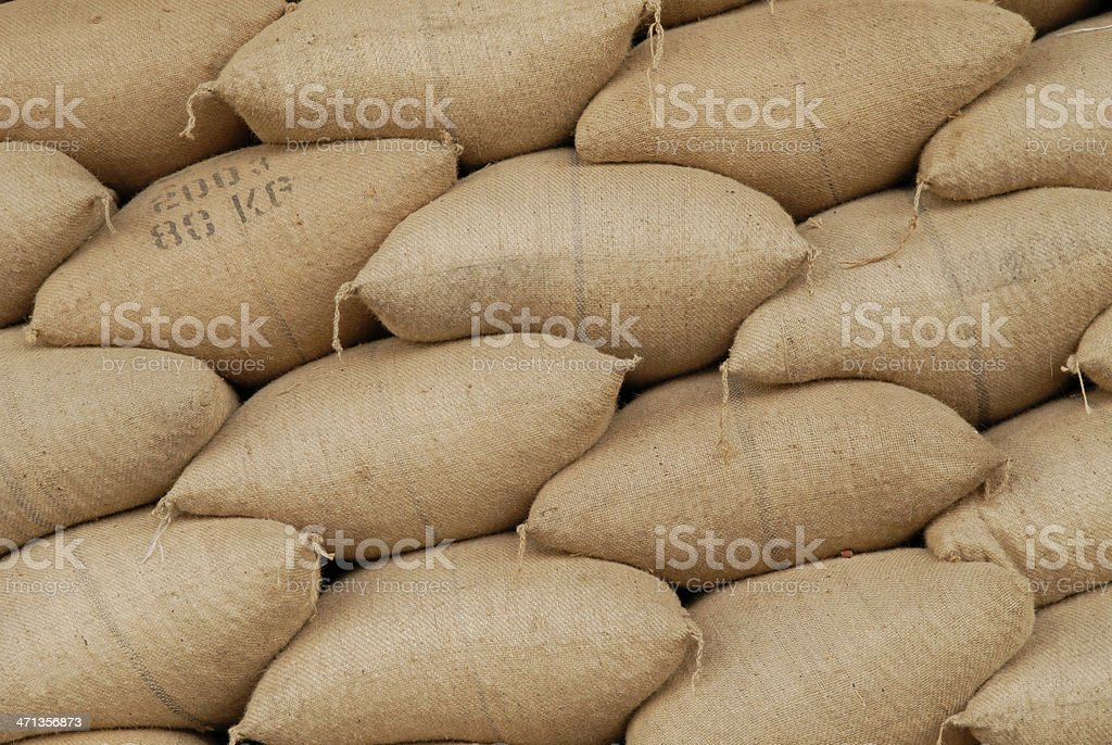 Nut Crop royalty-free stock photo