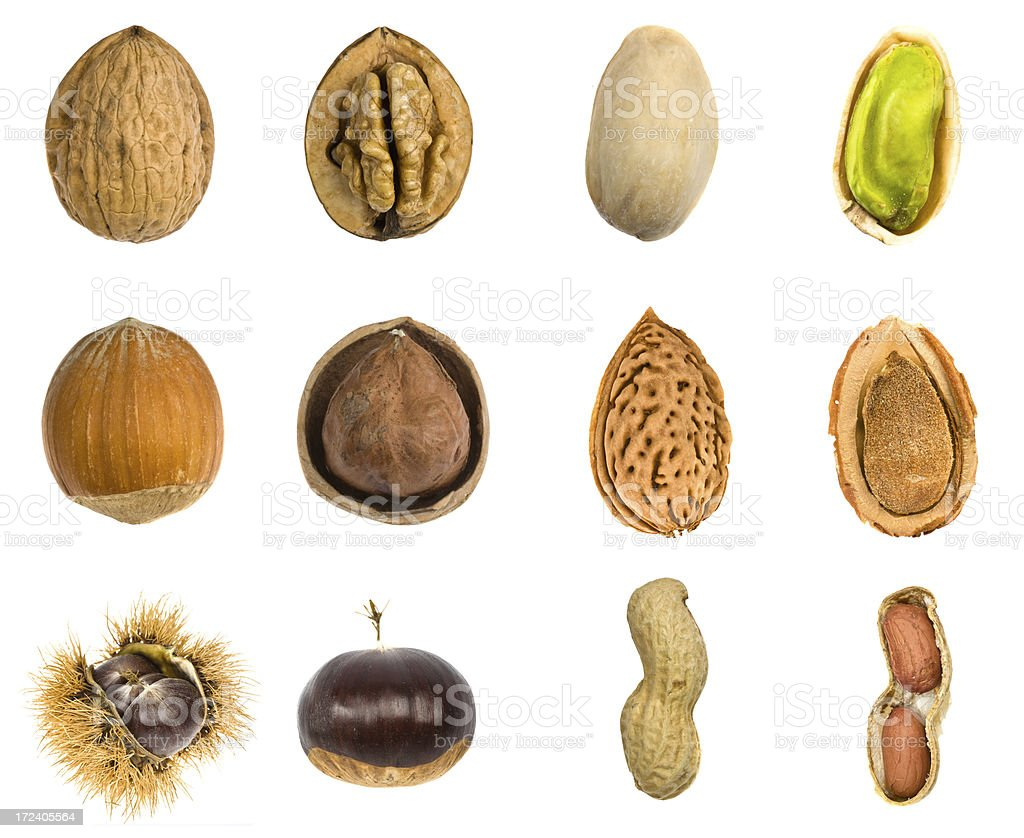 nut fruit isolated composition royalty-free stock photo